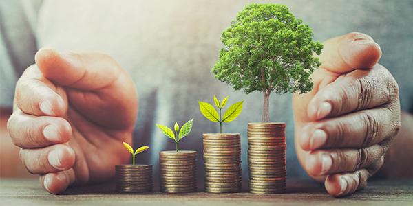 previsión social fondos de inversión , Carantia
