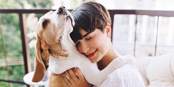 seguros particulares mascotas, Carantia